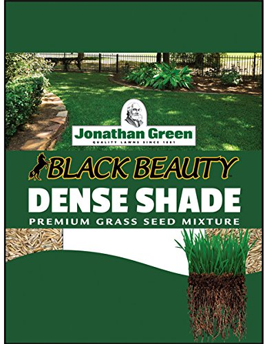 Jonathan Green 10622 Dense Shade Grass Seed Mix, 1 Pounds (Best Turf For Shade)