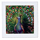 3dRose qs_104627_4 Vintage Digital Oil Painting Beautiful Colorful Peafowl Peacock-Quilt Square, 12 by 12-Inch