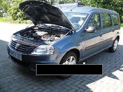 WES.Tuning 00010 Motorhaubenlifter