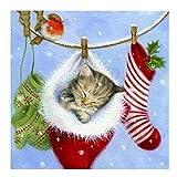 #1: 5D Diamond Painting - Full Drill Rhinestone Embroidery Arts Craft,Romantic Canvas Wall Decor Christmas Cat Hand Crafts(14.2x14.2 inch) (cat)