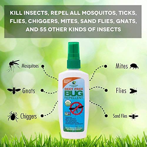 Bug Repellant Best Natural Bug Spray