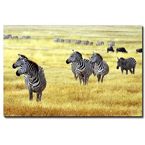 - African Grassland Zebra Canvas Wall Art Modern Animal Art Printed On Canvas Unframed For Home Decoration,24 * 36inch(60 * 90cm)