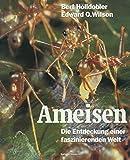 Ameisen, Bert Hölldobler, 303486373X