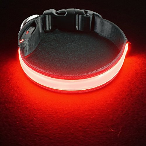 (PetIsay LED Dog Collar[2019 Update Version] USB Rechargeable with Waterproof Flashing Light, Reflective Light up Dog Collar for Night Safety(Cotton Candy Pink Small) )