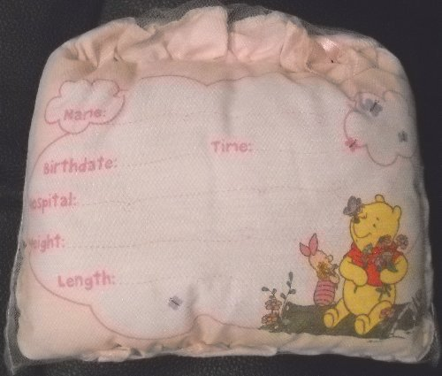 Disney Winnie the Pooh Birth Announcement Door Pillow w/ Pen by Disney
