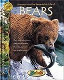 Bears, John Bonnett Wexo, 1888153903