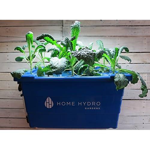 Hydro Gardens