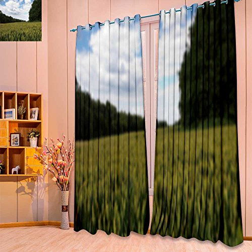 SeptSonne Twigs Fashion Design Print Thermal Insulated Blackout Curtain wheat growing in a field in the chilterns england out of focus with Tops for Bedroom(W84