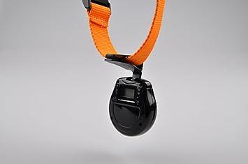 Pet Mini cámara, nniuk Automatic Pet cuello fotográfica digital USB de la cámara grabadora de vídeo Monitor para perros gatos cachorro: Amazon.es: Productos ...