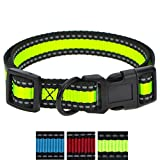 Night Reflective Nylon Dog Collar 3 Colorway (Large, Black/Lime)
