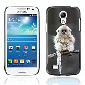 Graphic4You Cute White Monkey On A Tree Animal Design Hard Case Cover for Samsung Galaxy S4 Mini