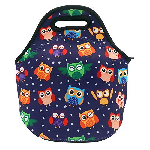 CASTLE STORY Lunch Bag kids,Lightweight design and Neoprene Waterproof and Insulated Fresh and Fit Gourmet Lunch Tote,Simple design Lunch Pouch Zipped For Men Women,Best Travel Bag (Colorful owl)