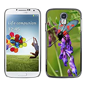 Hot Style Cell Phone PC Hard Case Cover // M00111814 Burnet Butterfly Insect Nature Macro // Samsung Galaxy S4 S IV SIV i9500