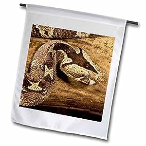 Danita Delimont - Snakes - Rhinoceros Viper, Central Africa - US39 JMC0047 - Joe and Mary Ann McDonald - 12 x 18 inch Garden Flag (fl_94205_1)