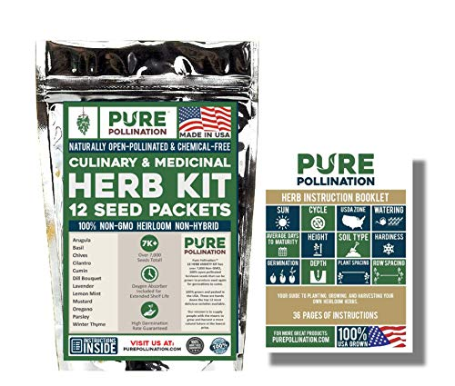 Pure Pollination's Herb Seed Variety Kit - 12 Unique Strains - Spice up your Garden - 100% Heirloom & Non GMO ()