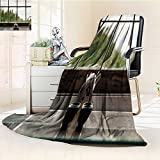 YOYI-HOME Original Luxury Duplex Printed Blanket, Hypoallergenic, A Ceramic Tea Set at The Edge of The Window Warm Microfiber All Season Perfect for Couch or Bed/47 W by 31.5'' H