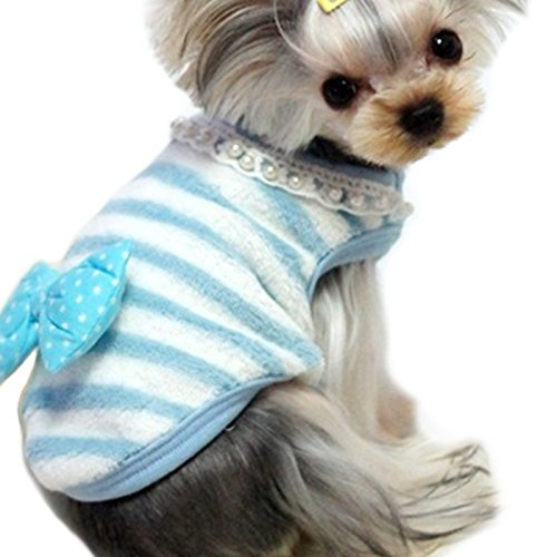 Guinea Pig Dog Costume (Alfie Pet by Petoga Couture - Emory Stripe Sweater for Small Animals like Guinea Pig, Rabbit, Hamster, Bandit, Ferret - Color: Blue, Size: Small)