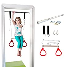 Indoor Swing by DreamGYM   Trapeze Bar and Gymnastic Rings Combo for Doorway Gym