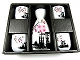 OliaDesign 5 Piece Ceramic White and Red Blossom Japanese Sake Set, White