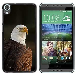 Plumas de aves nacionales de América Patriótico- Metal de aluminio y de plástico duro Caja del teléfono - Negro - HTC Desire 820