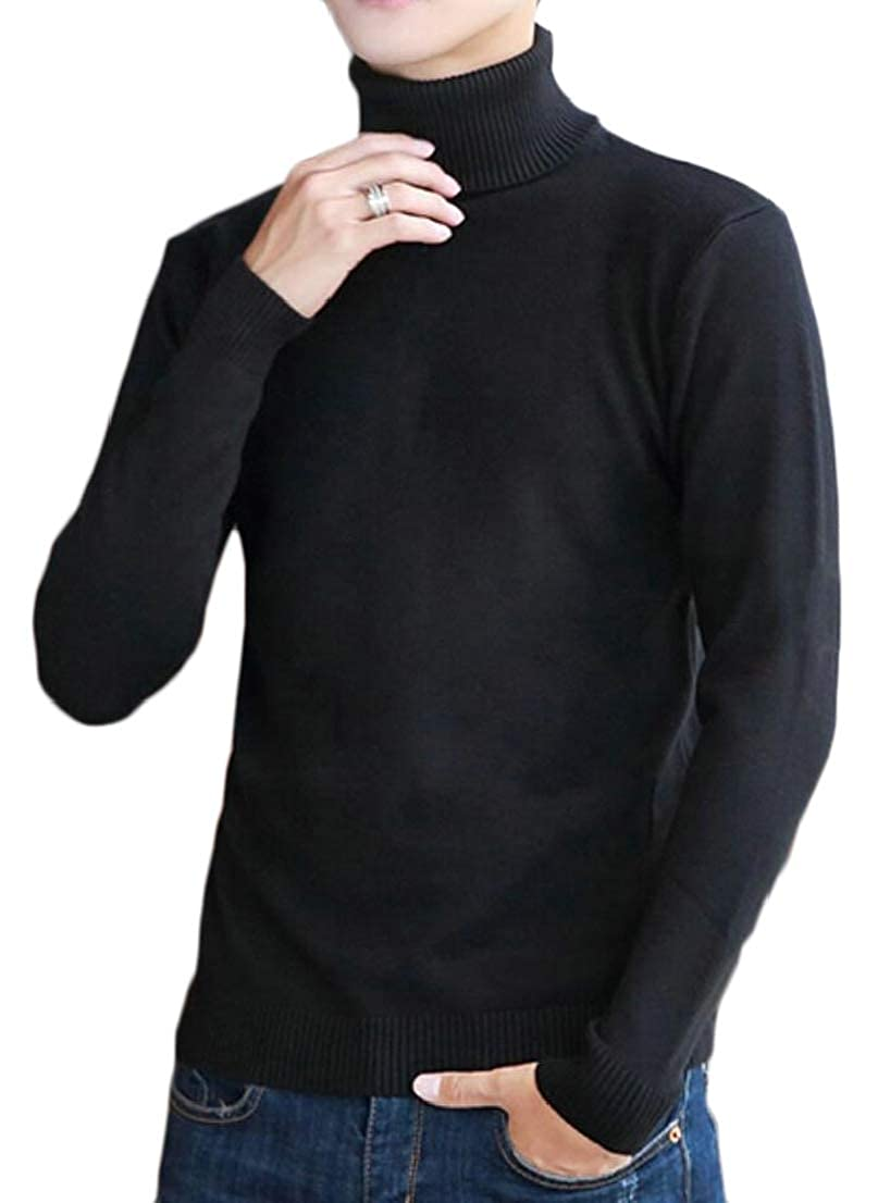 Generic Mens Leisure Knitwear Solid Slim Knitted Turtleneck Pullover Sweaters