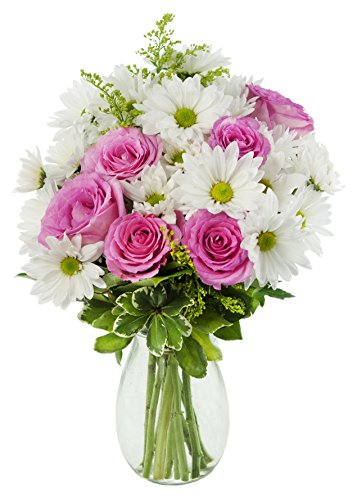 Icing on the Cake Bouquet of Pink Roses, White Daisies with Yellow Asters and Lush Greens with Vase - by KaBloom