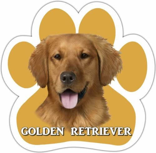 Golden Retriever Car Magnet With Unique Paw Shaped Design Measures 5.2 by 5.2 Inches Covered In UV Gloss For Weather Protection