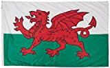 Cheap Annin Flagmakers Model 221119 Wales Flag Nylon SolarGuard NYL-Glo, 5×8 ft, 100% Made in USA to Official United Nations Design Specifications