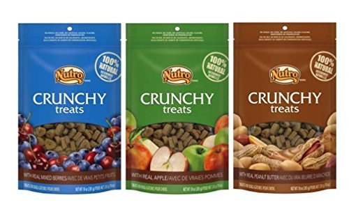 (Nutro All Natural Crunchy Training Treats For Dogs 3 Flavor Variety Bundle: (1) Peanut Butter, (1) Mixed Berries, and (1) Apple, 10 Oz. Ea. (3 Bags Total))