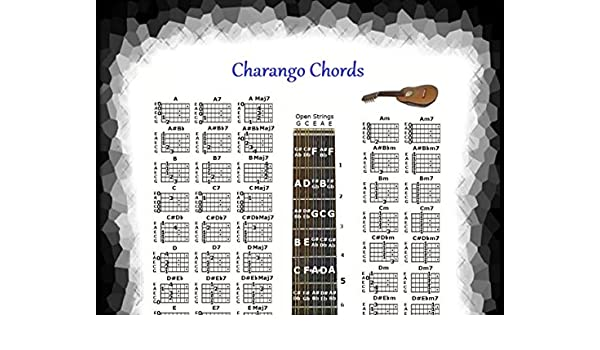 Amazon Charango Chords Poster Note Locator 5 Position Logo