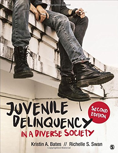 Juvenile Delinquency in a Diverse Society cover