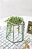 NCYP White Ceramic Flower Pot with Black Iron Rack Modern Garden Indoor Balcony Desktop Decorative Small Geometric Planter Metal Holder for Succulents Herb Cactus Plants