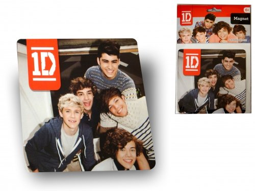 One direction group Flat Magnets