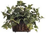 House of Silk Flowers Artificial 16-inch Philo Mini Ledge Plant