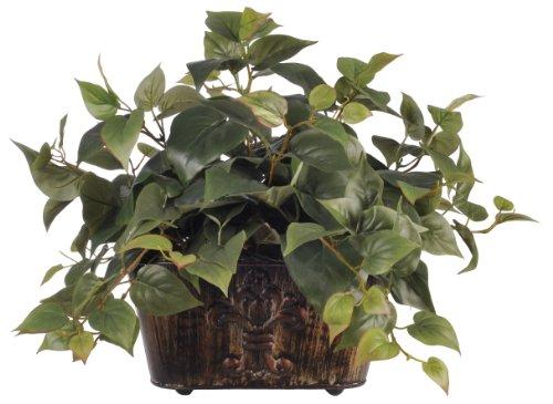 House of Silk Flowers Artificial 16-inch Philo Mini Ledge Plant -