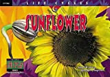 Sunflower, David M. Schwartz, 157471581X