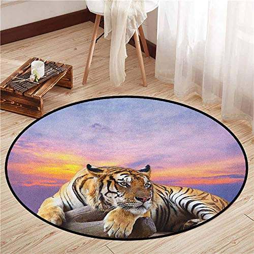 Skid-Resistant Rugs,Safari,Tiger Lying on Wood Blue Sky Colorful Sunset Pose Strpies Claws,Sofa Coffee Table Mat,3'11