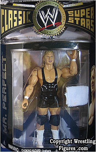 MR PERFECT CLASSIC SUPERSTARS 13 WWE JAKKS FIGURE