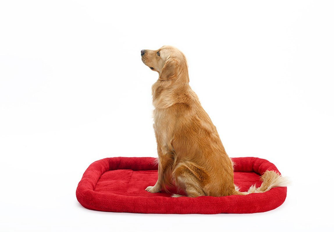 XCXpj Warm Pet cuccia cuscino morbido pile caldo sonno Mat cute Animal Catty e Doggy Sleeping giocare riposo (M, rosso)