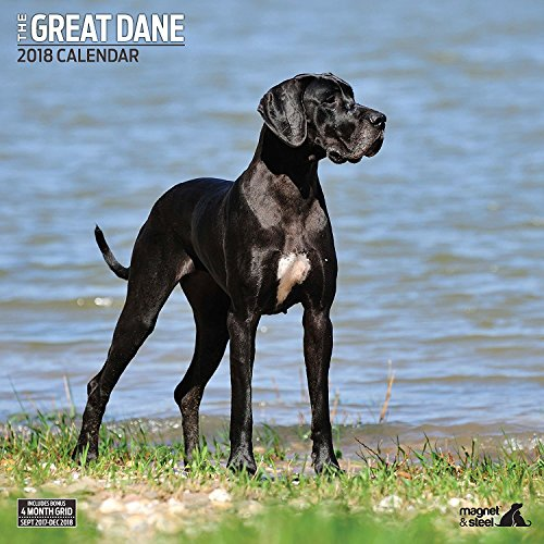 Great Dane 2018 Traditional Wall Calendar Photo #1