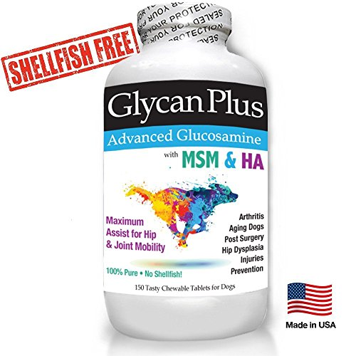 Best Glycan Plus Glucosamine for Dog w/ Chondroitin, MSM, HA, Arthritis Pain Relief 150 Hip & Joint Support Chewables Made in USA from USA Ingredients
