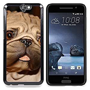 GIFT CHOICE / Teléfono Estuche protector Duro Cáscara Funda Cubierta Caso / Hard Case for HTC One A9 // Pug Tongue Big Brown Eyes Dog Small //