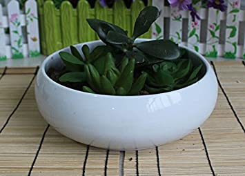 Ceramic Round Bowl Flower Planter Pot, Large Size, Color White