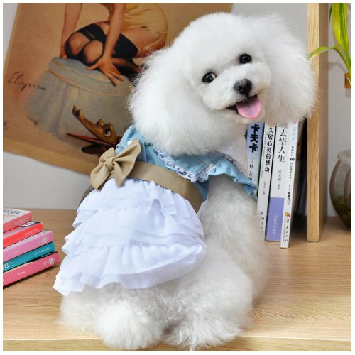 Wotefusi Halloween Cosplay Custume Beauty Fairy Denim Dog Dress for Dog Clothes Charming Cozy Dog Shirt Pet Dress Size S ()