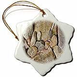 3dRose TDSwhite – Rock Photos - Different Size Rocks - 3 inch Snowflake Porcelain Ornament (orn_281885_1)