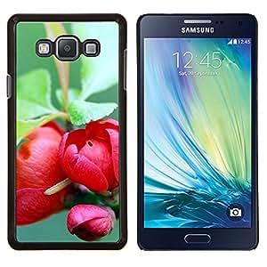 EJOOY---Cubierta de la caja de protección para la piel dura ** Samsung Galaxy A7 A7000 ** --Planta Naturaleza Forrest Flor 73
