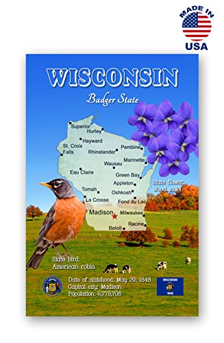 WISCONSIN MAP postcard set of 20 identical postcards. WI state map post cards. Made in USA.