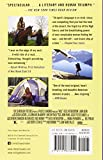 Wild (Movie Tie-in Edition): From Lost to Found