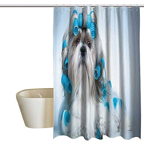 MaryMunger Dog Lover Decor Collection Waterproof Bathtub Curtain Shih Tzu Dog with Curlers Grooming Hairstyle Salon Front View Closeup Studio Shot Shower Curtain Rustic W108 x L72 Blue Beige ()