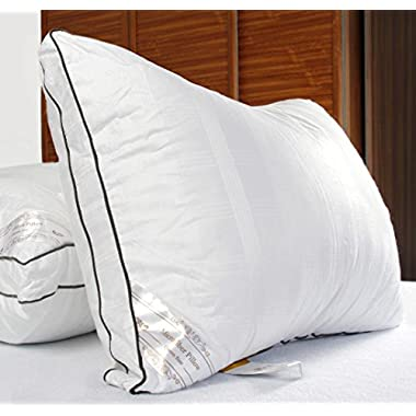 DUCK & GOOSE CO Premium Hotel Quality Microfiber Luxury Bedding Pillow, Hypo-Allergenic, 100% Cotton with Stylish Design White with Grey Piping Two Pillows King
